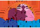 Raj Endogynae | Gynae Endoscopic Surgeons Conference | Gynae